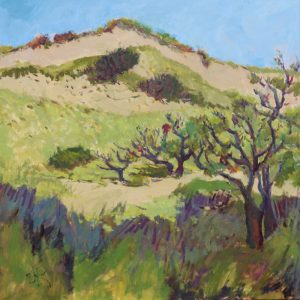 Memoir from the Dunes | 36x36 | Oil on Canvas | CJK